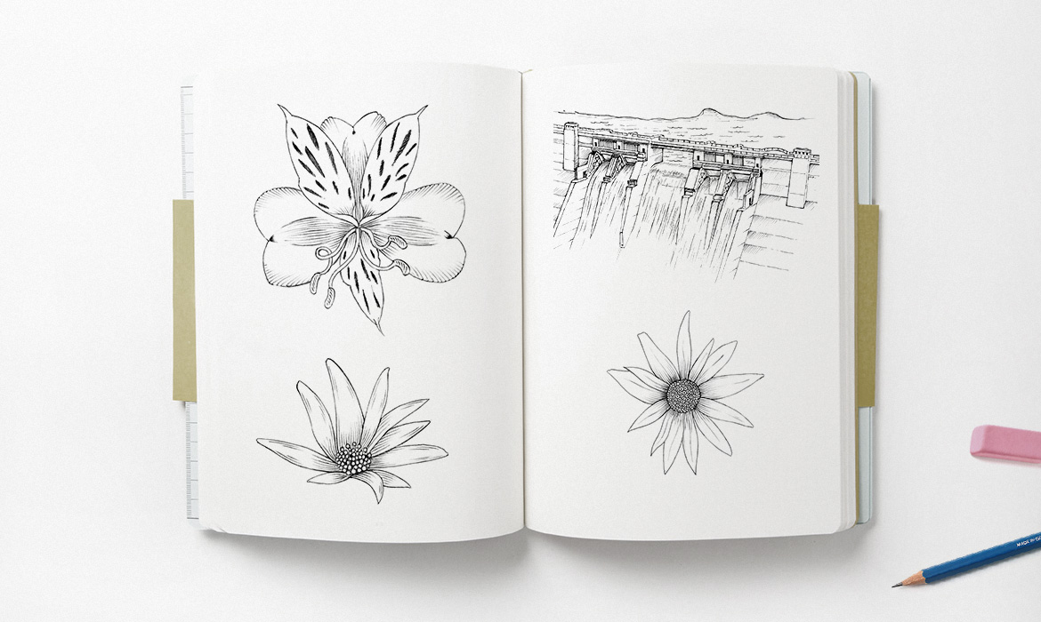 flowers and dam illustration sketchpad mockup