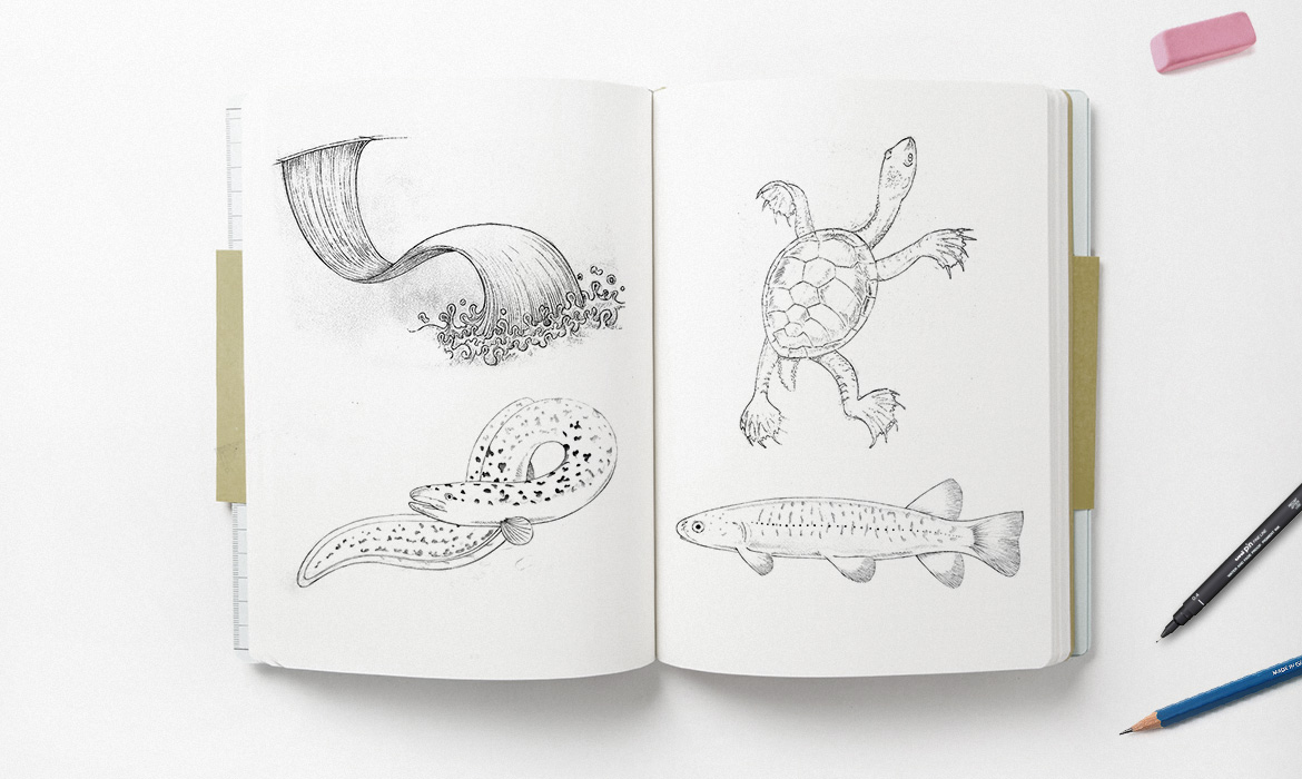 fauna illustration sketchpad mockup